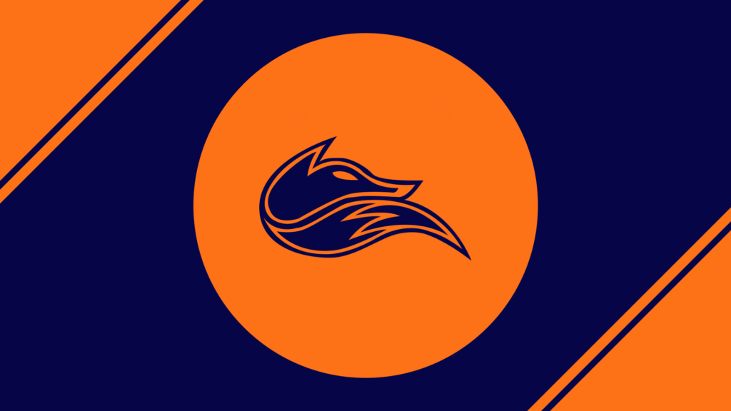 Echo Fox Flat wallpaper